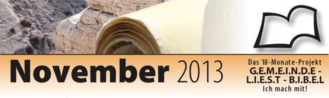 Leseplan 2013 November